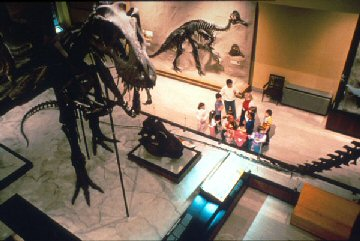 Dinosaur Hall, Carnegie Museum of Natural History
