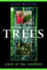 Cover of An Eclectic Guide to TREES East of the Rockies