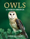 Cover of Owls of North America