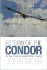 Cover of Return of the Condor